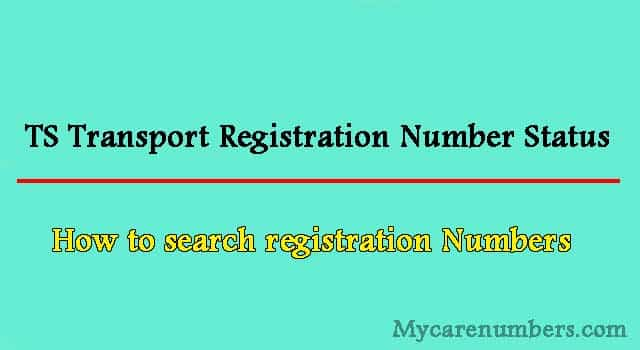 TS Transport Registration Number Status